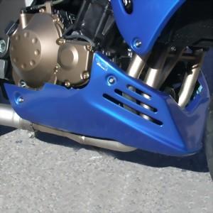 Bugspoiler für Kawasaki Z750 2004-2006
