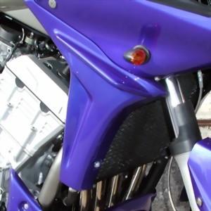 Kühlerverkleidung für Yamaha FZS 1000 Fazer