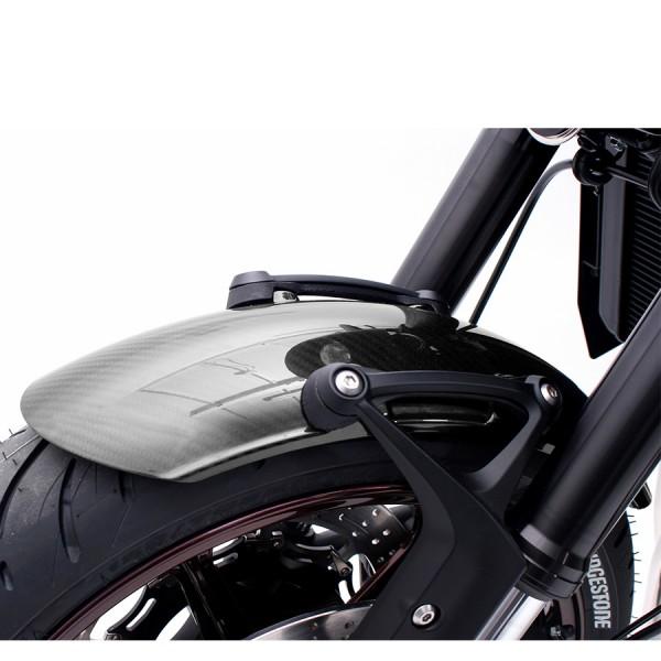 Carbonkotflügel für Kawasaki Z 900 RS komplett mit Anbaukit