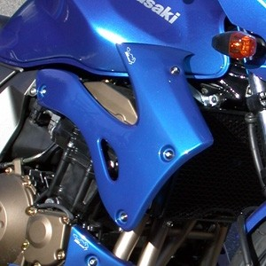 Kühlerverkleidung für Kawasaki Z750 2004-2006