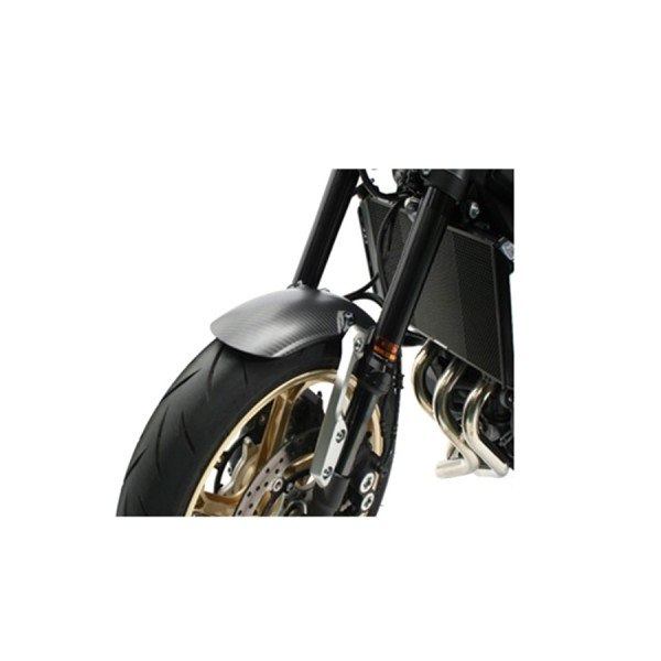 Carbonkotflügel für Yamaha XSR 900 komplett mit Anbaukit